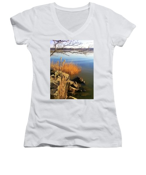 Winter Water Women's V-Neck (Athletic Fit)