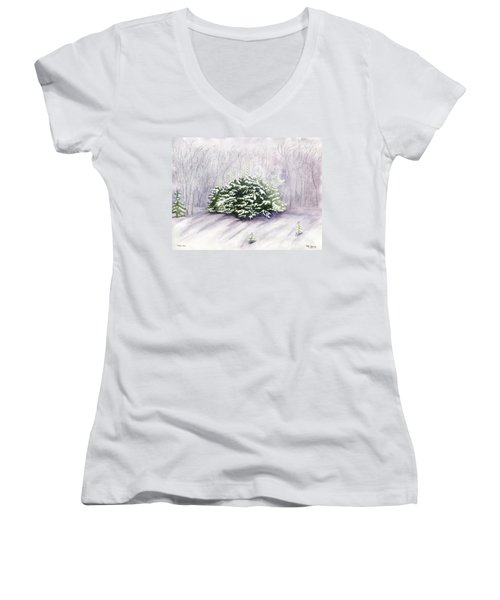 Women's V-Neck T-Shirt (Junior Cut) featuring the painting Winter Wind by Melly Terpening