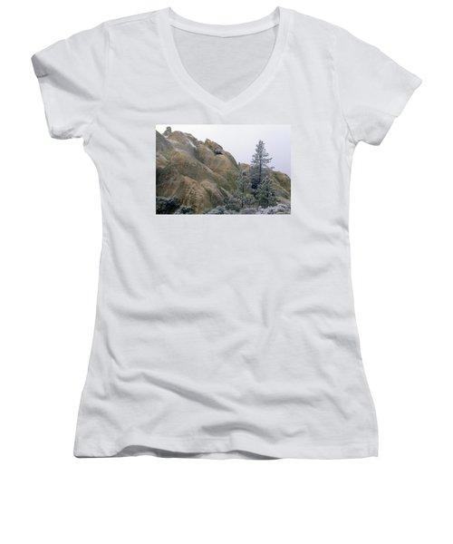 Winter Wind Women's V-Neck T-Shirt (Junior Cut)