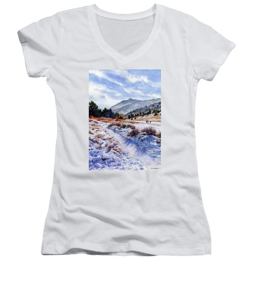 Winter Wonderland Women's V-Neck T-Shirt (Junior Cut) by Anne Gifford
