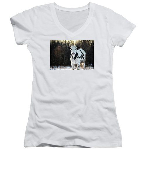 Wisconsin Dairy Cow Women's V-Neck