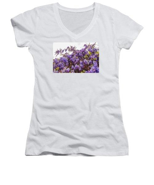 Wisteria Spring Bloom Women's V-Neck T-Shirt