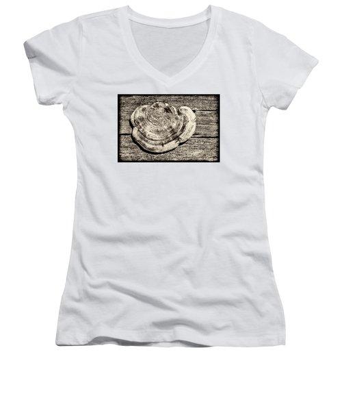 Women's V-Neck T-Shirt (Junior Cut) featuring the photograph Wood Decay Fungi, Nagzira, 2011 by Hitendra SINKAR