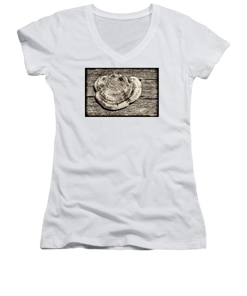 Women's V-Neck T-Shirt featuring the photograph Wood Decay Fungi, Nagzira, 2011 by Hitendra SINKAR