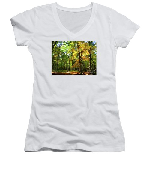 Wood Plank Trail Women's V-Neck (Athletic Fit)