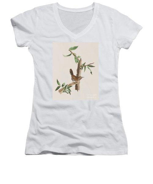 Wren Women's V-Neck T-Shirt (Junior Cut) by John James Audubon