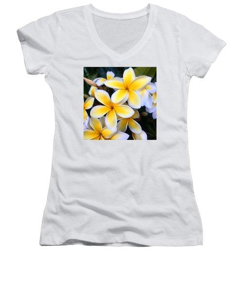 Yellow And White Plumeria Women's V-Neck