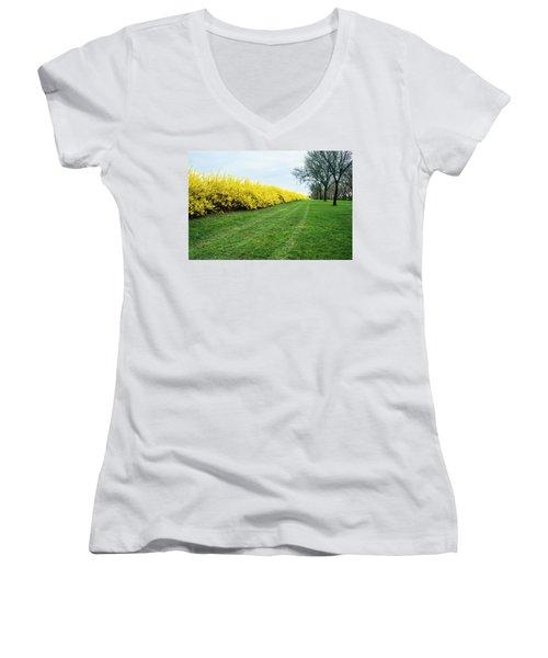 Yellow Flowers Women's V-Neck