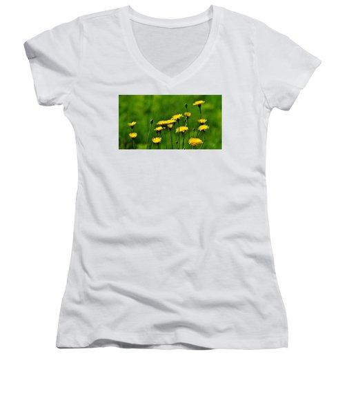 Yellow Wildflowers Women's V-Neck (Athletic Fit)