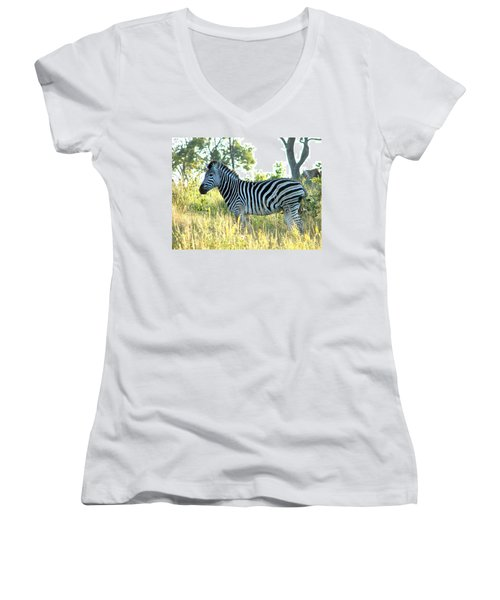 Young Zebra Women's V-Neck (Athletic Fit)