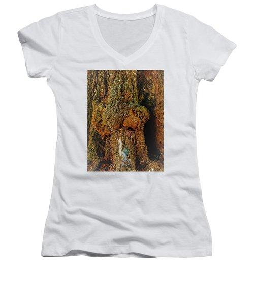 Z Z In A Tree Women's V-Neck (Athletic Fit)