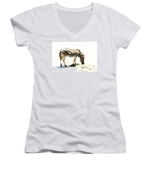 Women's V-Neck T-Shirt (Junior Cut) featuring the photograph Zebra Stripes by Stephen Mitchell