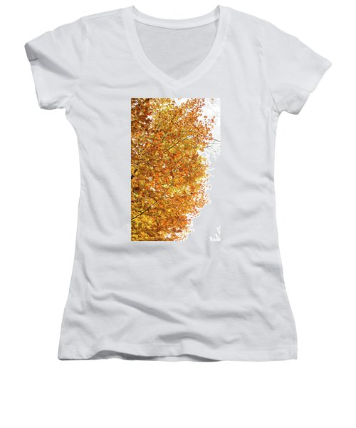Autumn Explosion 2 Women's V-Neck