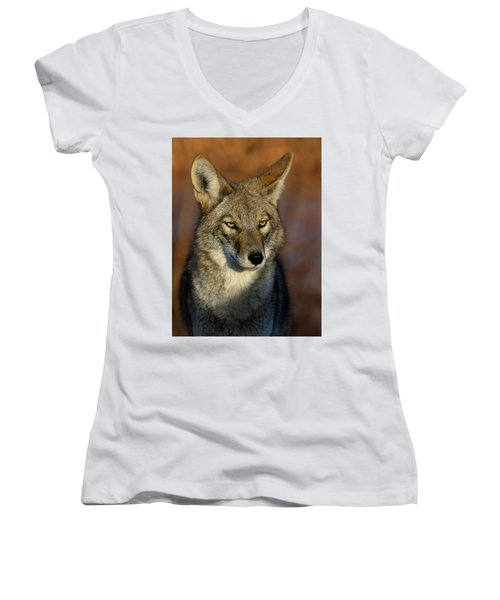 Coyote 1 Women's V-Neck