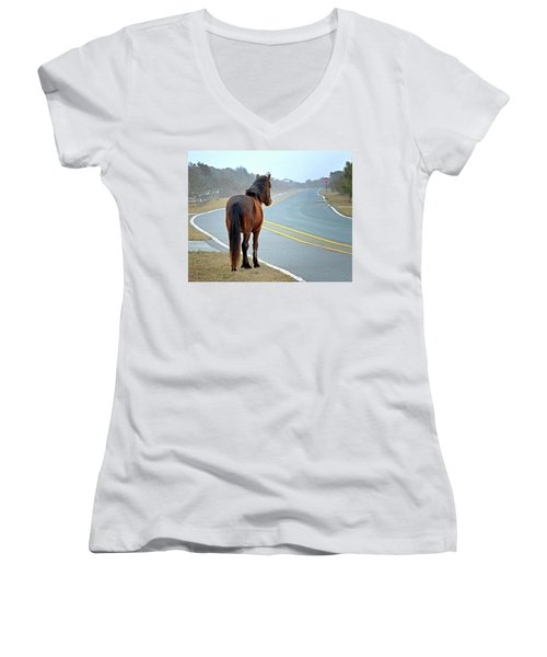 Delegats's Pride Looking For Visitors To Assateague Island Women's V-Neck