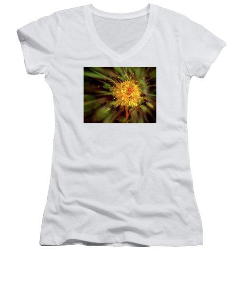Exploding Wildflower Women's V-Neck