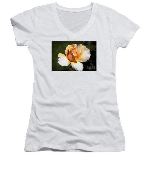 Fragrant Rose Women's V-Neck