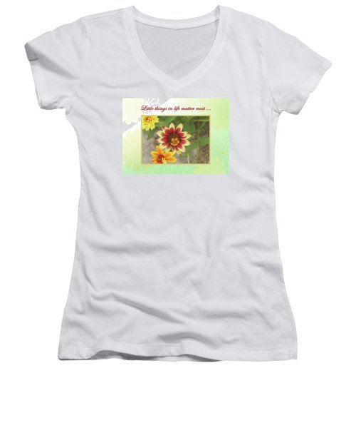 Friendship, A Smiling Indian Blanket Flower  Women's V-Neck