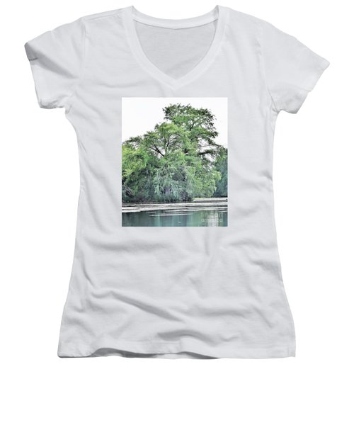 Giant River Tree Women's V-Neck