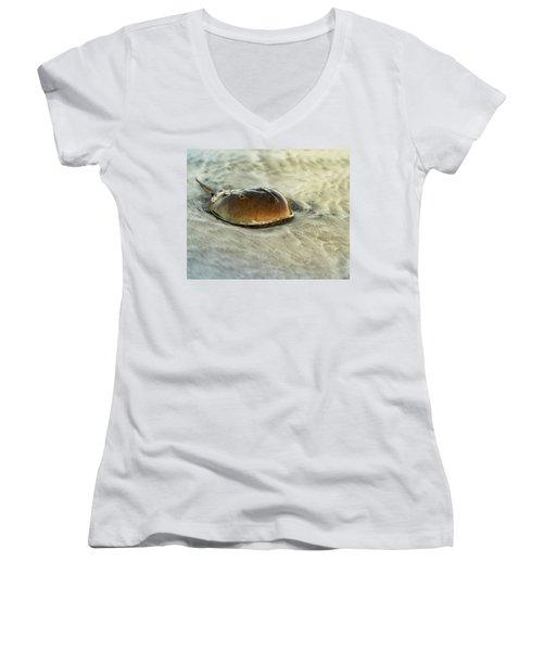 Horseshoe Crab On The Beach Women's V-Neck