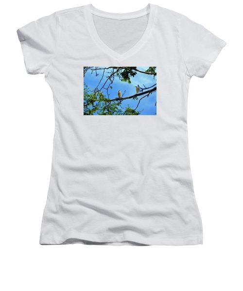 Ibis Perch Women's V-Neck