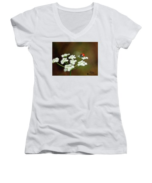 Ladybug In White Women's V-Neck
