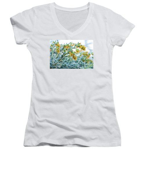 Mexican Echeveria In The  Morning Women's V-Neck
