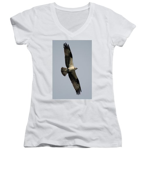 Osprey With Fish Women's V-Neck