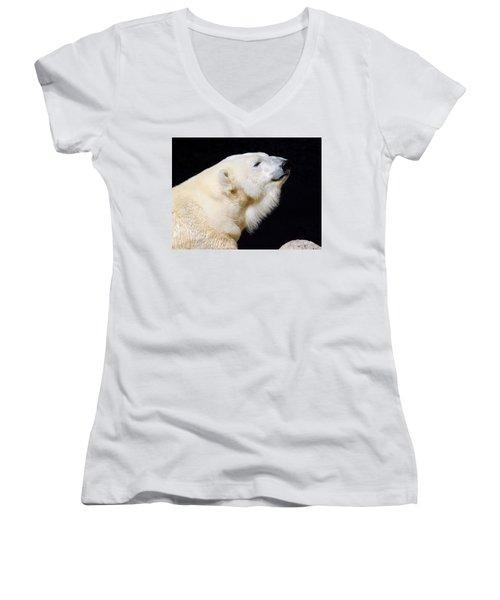 Women's V-Neck featuring the photograph Polar Bear by Dan Miller