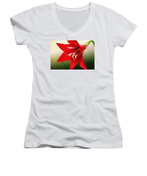 Red Lily Flower Women's V-Neck