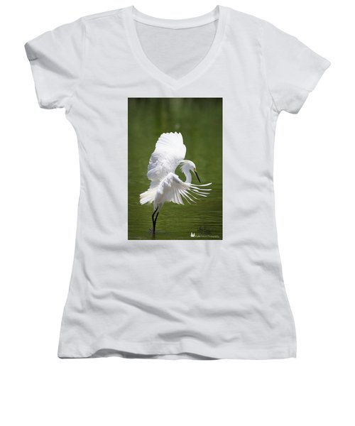 Snowy Dance Women's V-Neck
