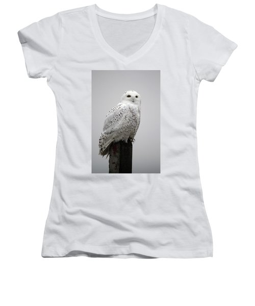 Snowy Owl In Fog Women's V-Neck