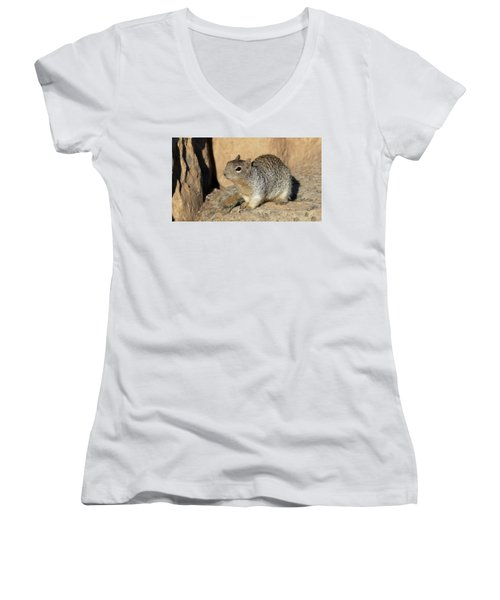 Squirrel Women's V-Neck