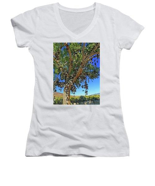 The Shoe Tree Women's V-Neck