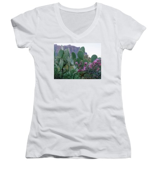 The Vibrant Desert Women's V-Neck