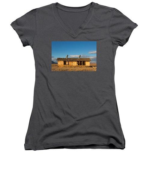 Derelict Shack. Women's V-Neck T-Shirt