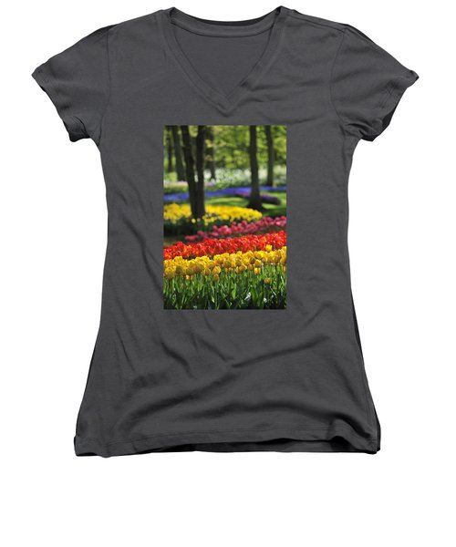 Women's V-Neck T-Shirt (Junior Cut) featuring the photograph 090811p124 by Arterra Picture Library