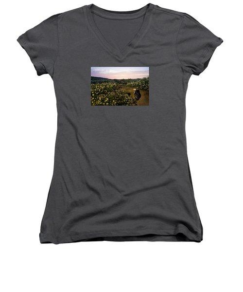 Atlantic Puffin At Burrow Skomer Island Women's V-Neck T-Shirt (Junior Cut) by Sebastian Kennerknecht