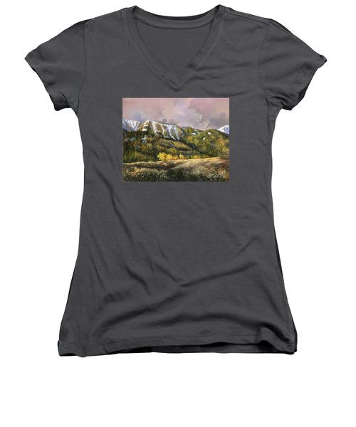 Women's V-Neck T-Shirt (Junior Cut) featuring the painting Bear Claw by Lynne Wright