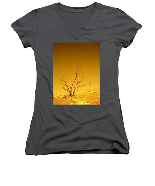 Burnt Bush Women's V-Neck (Athletic Fit)