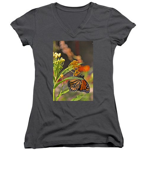 Clinging Butterfly Women's V-Neck (Athletic Fit)