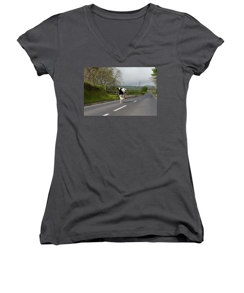 Cow Walks Along Country Road Women's V-Neck (Athletic Fit)