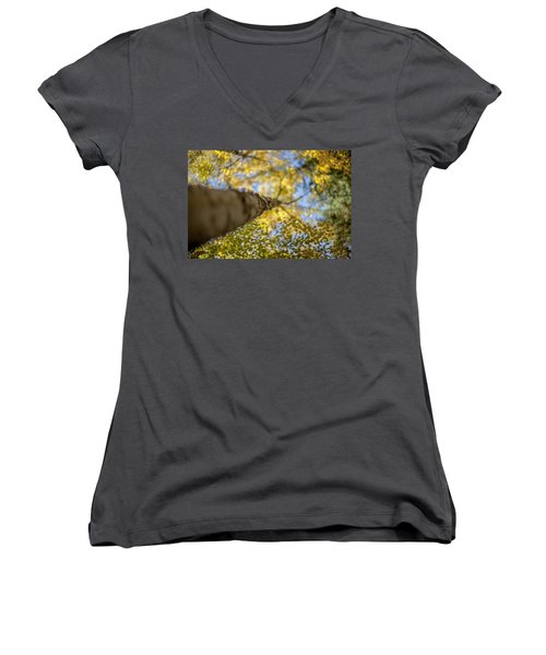 Women's V-Neck T-Shirt (Junior Cut) featuring the photograph Daydreaming by Aaron Aldrich