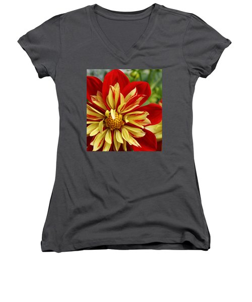 Fireworks Women's V-Neck T-Shirt (Junior Cut) by Bruce Bley