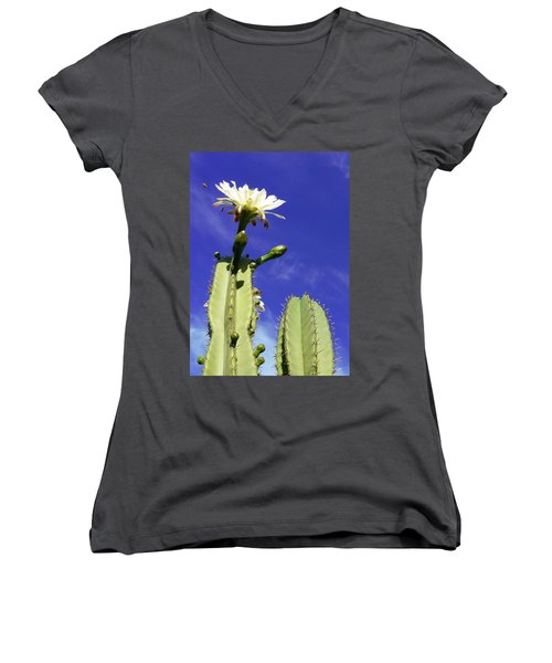 Flowering Cactus 2 Women's V-Neck T-Shirt (Junior Cut) by Mariusz Kula