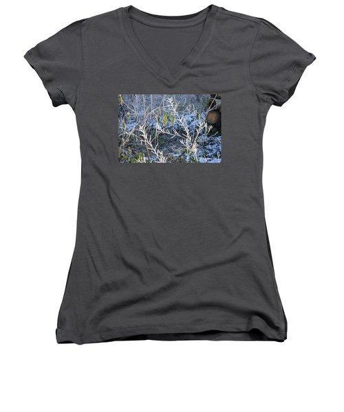 Women's V-Neck T-Shirt (Junior Cut) featuring the photograph Frozen by Felicia Tica