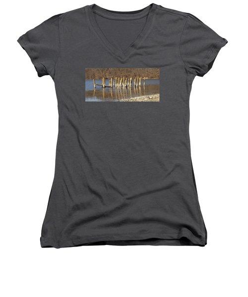 Frozen Pilings Women's V-Neck T-Shirt (Junior Cut) by Michael Porchik