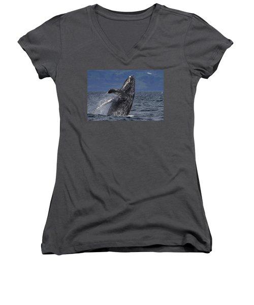 Humpback Whale Breaching Prince William Women's V-Neck