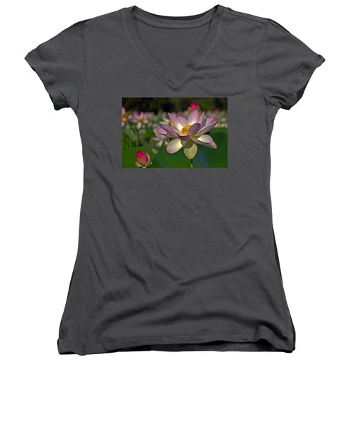 Women's V-Neck T-Shirt (Junior Cut) featuring the photograph Lotus Flower by Jerry Gammon