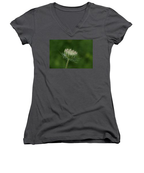 Women's V-Neck T-Shirt (Junior Cut) featuring the photograph New Beginning by Neal Eslinger